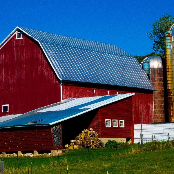 http://www.denisemarie.co/war-on-american-farmers/